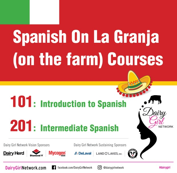 SpanishCourseGraphic_March2019