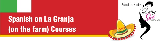 Spanish Courses_ Banner Website